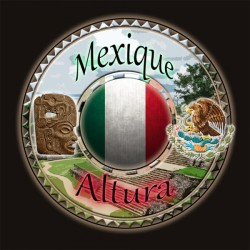 MEXIQUE ALTURA 250g - Café d'Amérique Centrale