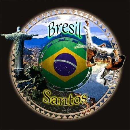 BRESIL SANTOS 250g - Café d'Amérique du Sud