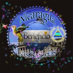 Nicaragua Maragorype Beneficio Las Segovias 250g - Café d'Amérique Centrale