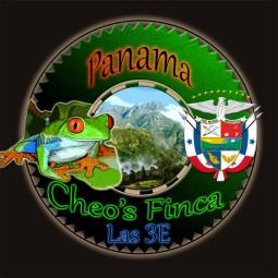 PANAMA Cheo's Finca las 3 E : 250g - Café d'Amérique Centrale